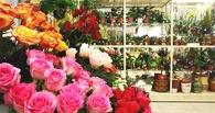 Цветочный запрет: чем грозят санкции Россельхознадзора омскому бизнесу