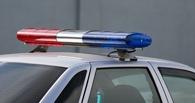 На трассе в Омской области в результате аварии погибли два человека