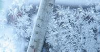 Аномально теплый январь напоследок поморозит омичей