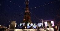 Мэрия Омска решила не экономить: 10 млн рублей на главную елку города