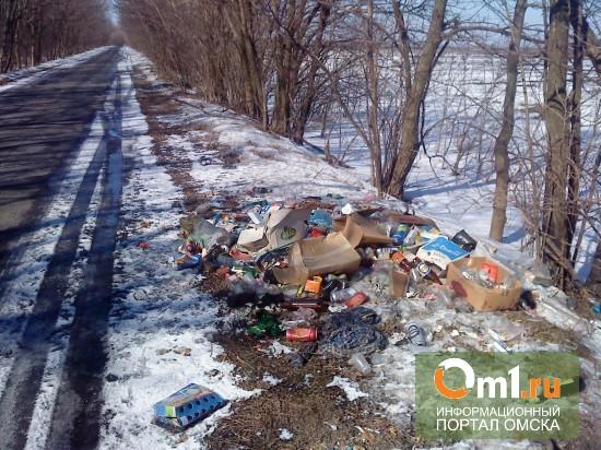 В Омске к прибытию Олимпийского огня чистят дороги