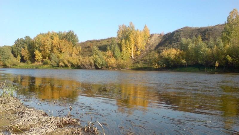 В Омской области восьмилетнего мальчика нечаянно столкнули в реку