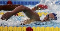 Омские пловцы поедут в Москву на Кубок мира