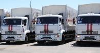Москва подготовила пятый гуманитарный конвой для Донбасса