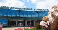 Жители Омска чаще всего едут в Новосибирск ради зоопарка