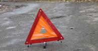 На трассе в Омской области автоледи насмерть сбила пешехода