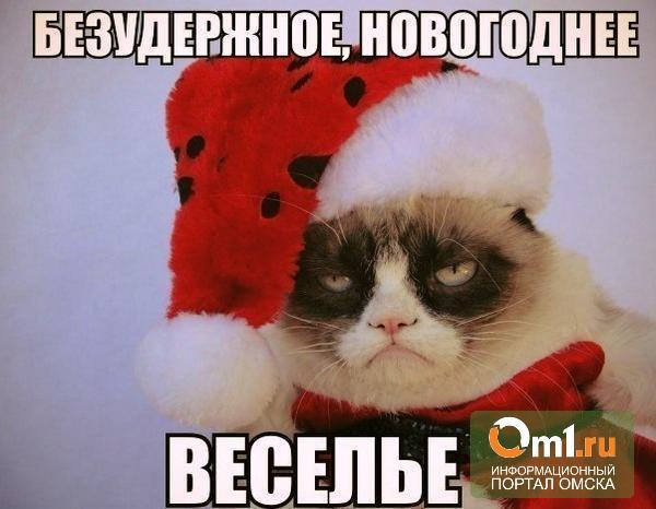Новогодние каникулы пошли на пользу жителям России