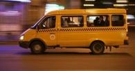 Омские маршрутчики будут брать за проезд по 20 рублей