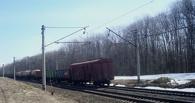 Житель Омской области подговаривал безработных обворовывать грузовые поезда