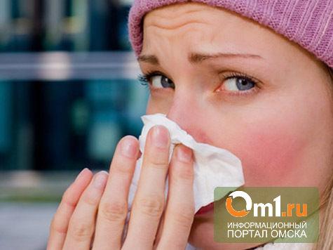 Роспотребнадзор: в морозы в Омске и области гриппом никто не заболел