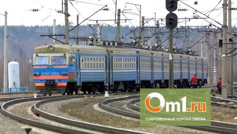 Новосибирские силовики расследуют убийство в поезде «Москва-Владивосток» под Омском