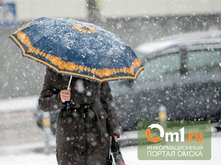На выходные в Омской области может пойти дождь и мокрый снег