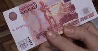 В Омской области 6-летний расплатился за игрушку сувенирной купюрой