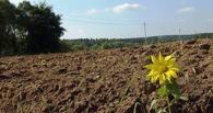 Омск получит 36 тысяч квадратных метров земли для строительства домов многодетным семьям