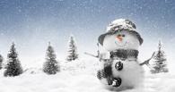 Омичи смогут отметить День снега метанием валенка и лепкой снеговиков