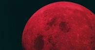 Неомская «кровавая» суперлуна: соцсети заполнили снимки редкого явления