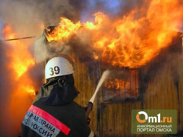 По факту смерти людей на пожаре в Омской области начата проверка