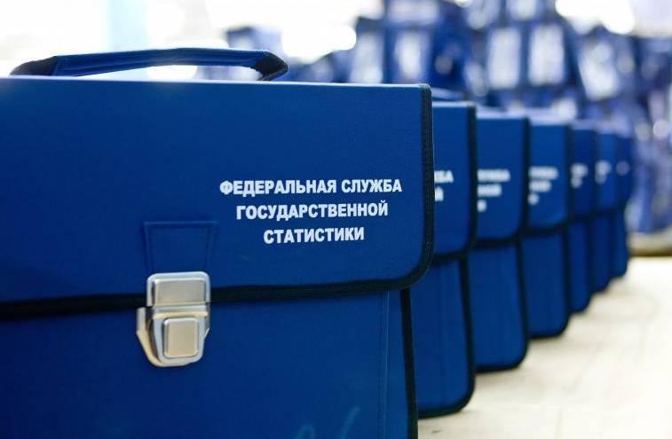 Около 2% омичей попадут в микроперепись населения России