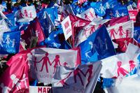 Во Франции одобрили однополые браки