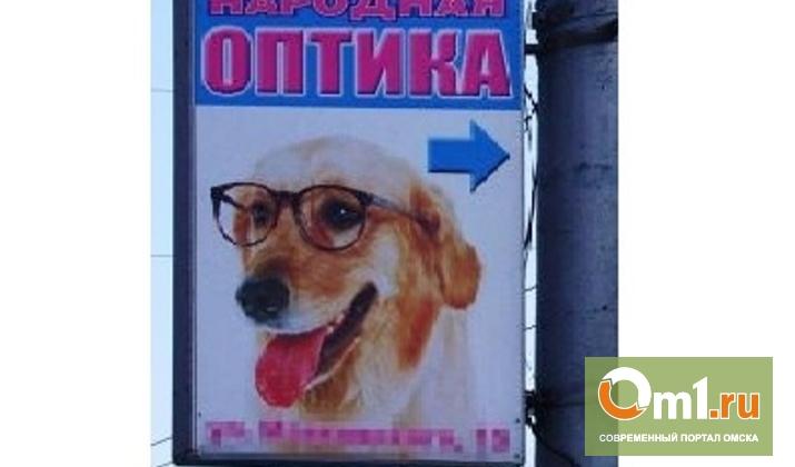 Реклама оптики с собакой в очках задела обидчивых омичей