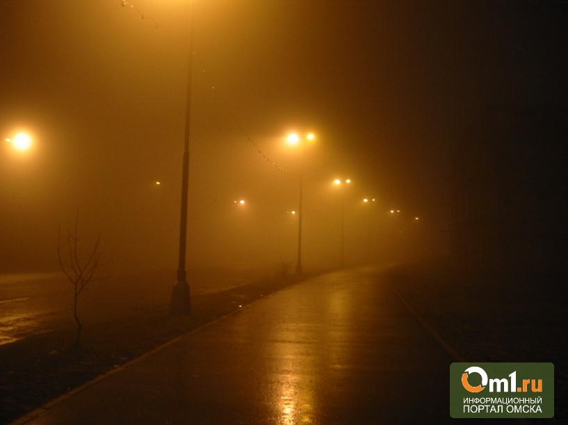 В Омске более тысячи объектов инфраструктуры нужно «выводить из сумрака»
