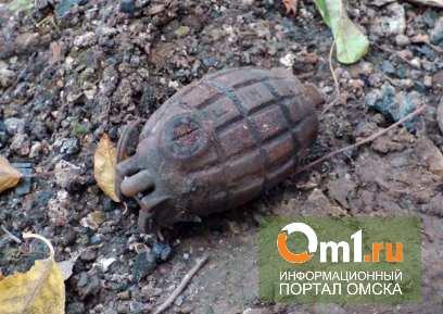 В Омской области пенсионерка нашла у себя на даче осколочную гранату