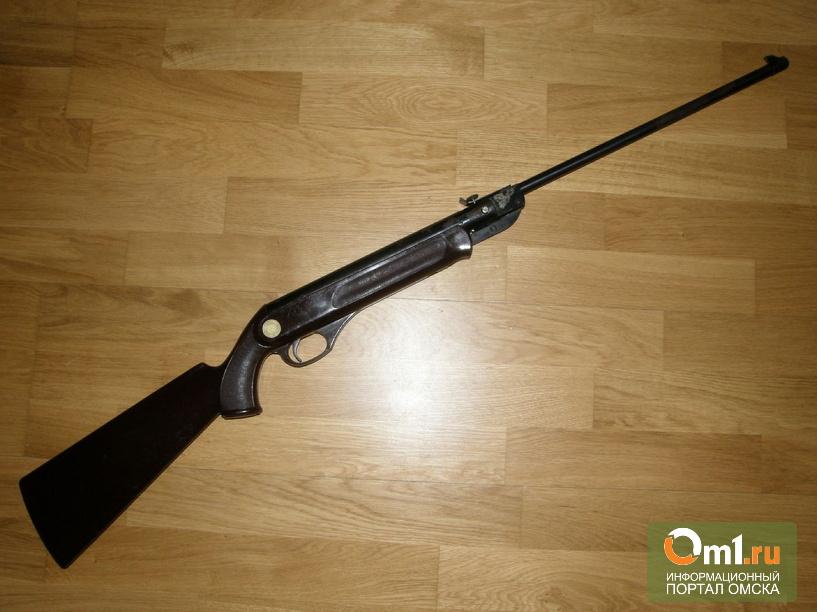 В Омской области девочку ранили из пневматической винтовки