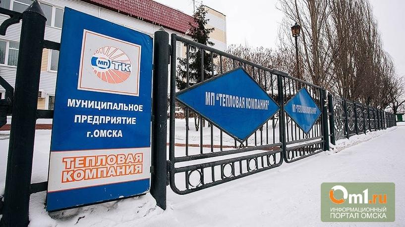 Омские депутаты: Акции «Тепловой компании» пока продавать не будем
