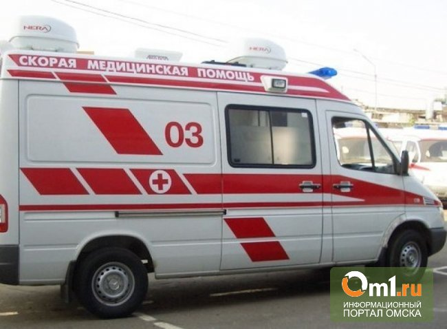 Под Омском в лобовом ДТП ранены трое детей