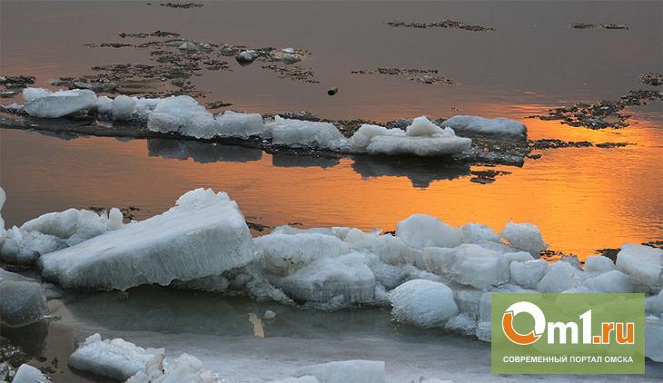 Ледоход в Омске начнется с 20 апреля
