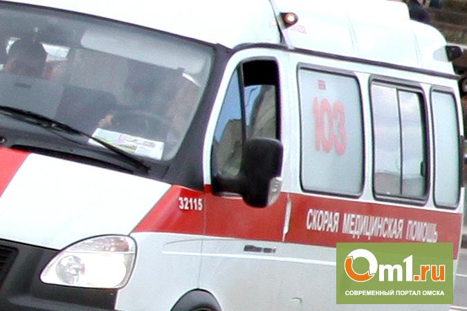 В Омске грузовая «Газель» сбила 16-летнюю девушку