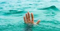 В Омской области в водоворот на Иртыше затянуло подростка