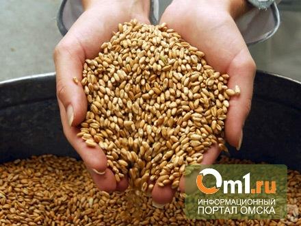 Омская область активно участвует в зерновых интервенциях