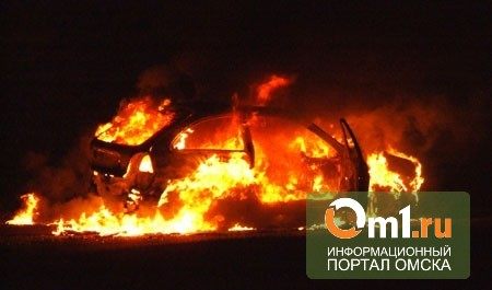 В Омске во дворе дома дотла сгорел Mitsubishi Lancer
