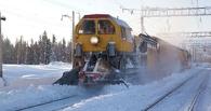 Под Омском грузовой поезд переехал двух парней