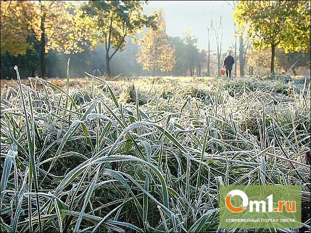 Лето кончилось: на севере Омской области ожидаются заморозки