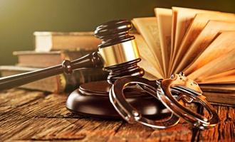 После инцидента с омской Евой Рейх в Совфеде заговорили о снижении возраста уголовной ответственности