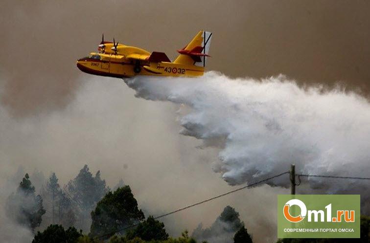 Лесные пожары в Омске. Сезон открыт