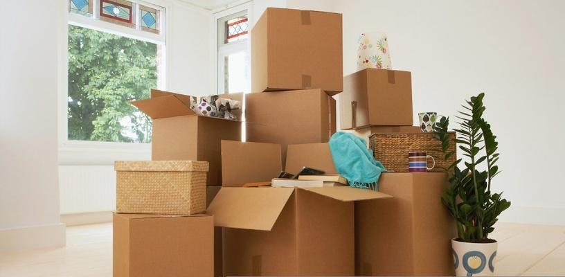 Организация переезда с помощью мувинговой компании