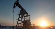 На севере Омской области будут добывать нефть