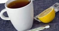 В Омске гриппа нет: количество заболевших не превышает средние показатели