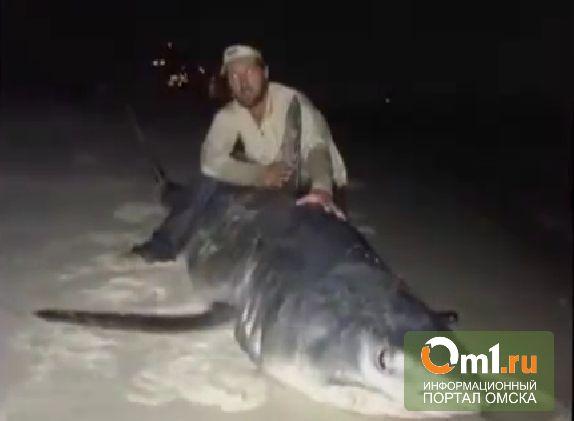 Американский рыбак выловил акулу весом 365 кг