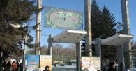 В парке 30-летия ВЛКСМ в Омске начали вырубать деревья