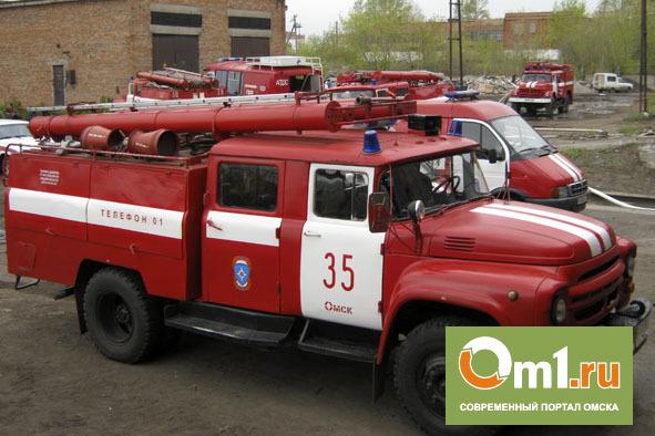 В Омске из горящего дома спасли 5-летнего мальчика