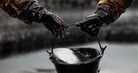 «Это стабилизирует рынок»: российские нефтяники согласились заморозить добычу нефти