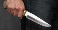 В Омской области мужчина убил родную сестру из-за наследства