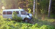 В Омской области на трассе в ДТП попала ГАЗель