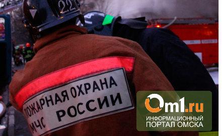 В Омской области в огне погиб хозяин частного дома и обгорела пенсионерка