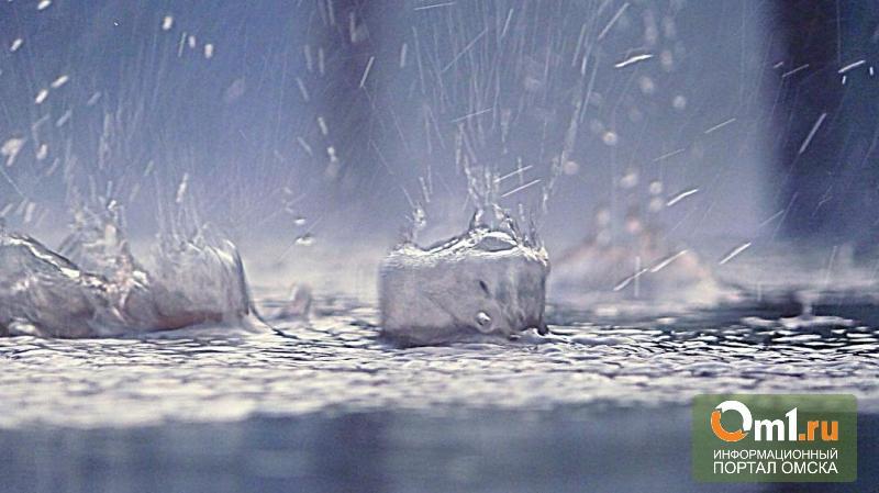 Новая неделя в Омске начнется с дождей