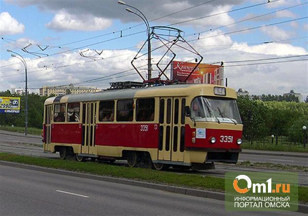 Омичка отсудила 200 тысяч за сбитого трамваем отца